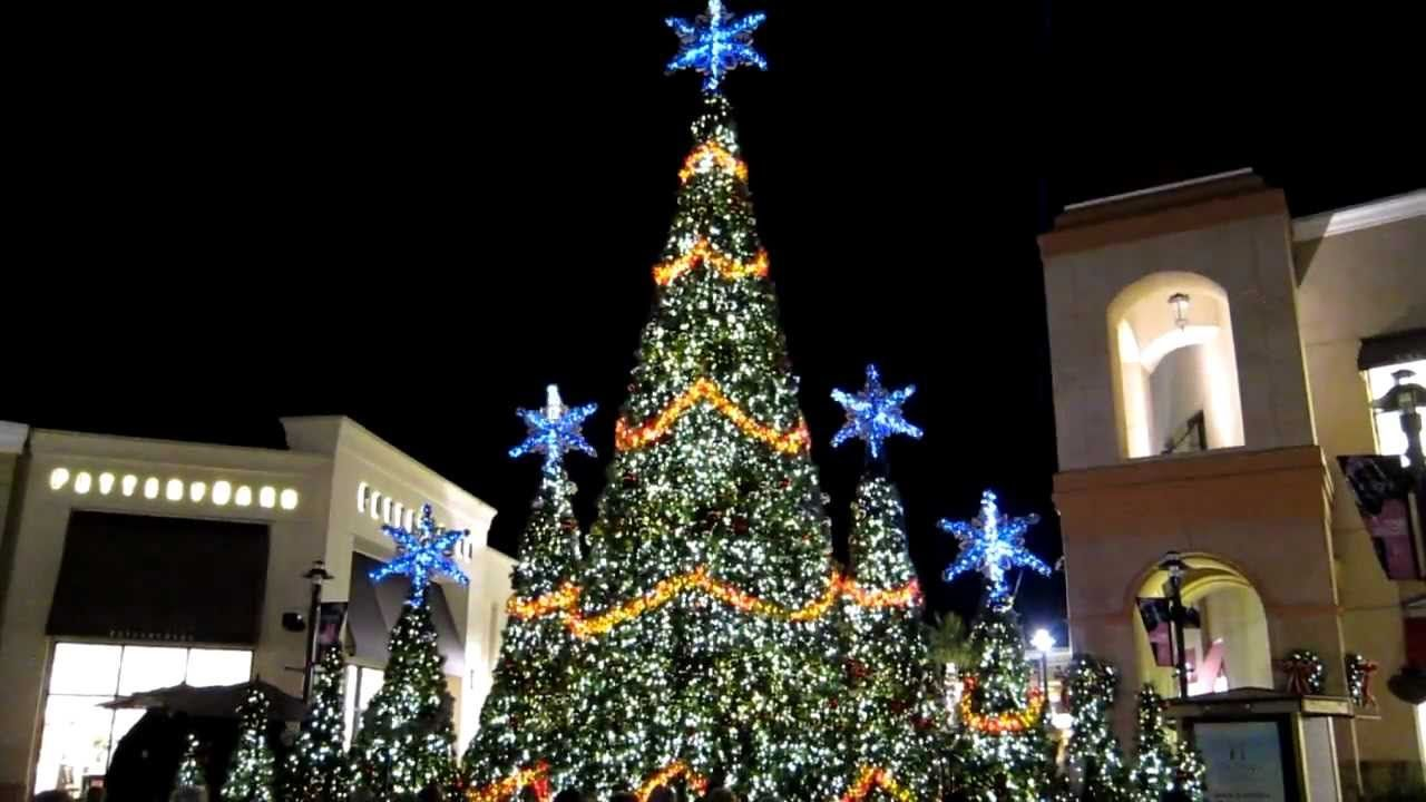 Christmas Lights Bay Area Immortal Fitness 15 Places To See Christmas Lights In The Tampa Bay