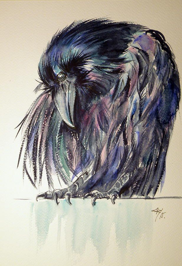 Crow Painting by Kovacs Anna BrigittaArt Lips ✖️More Pins Like This One At FOSTERGINGER @ Pinterest