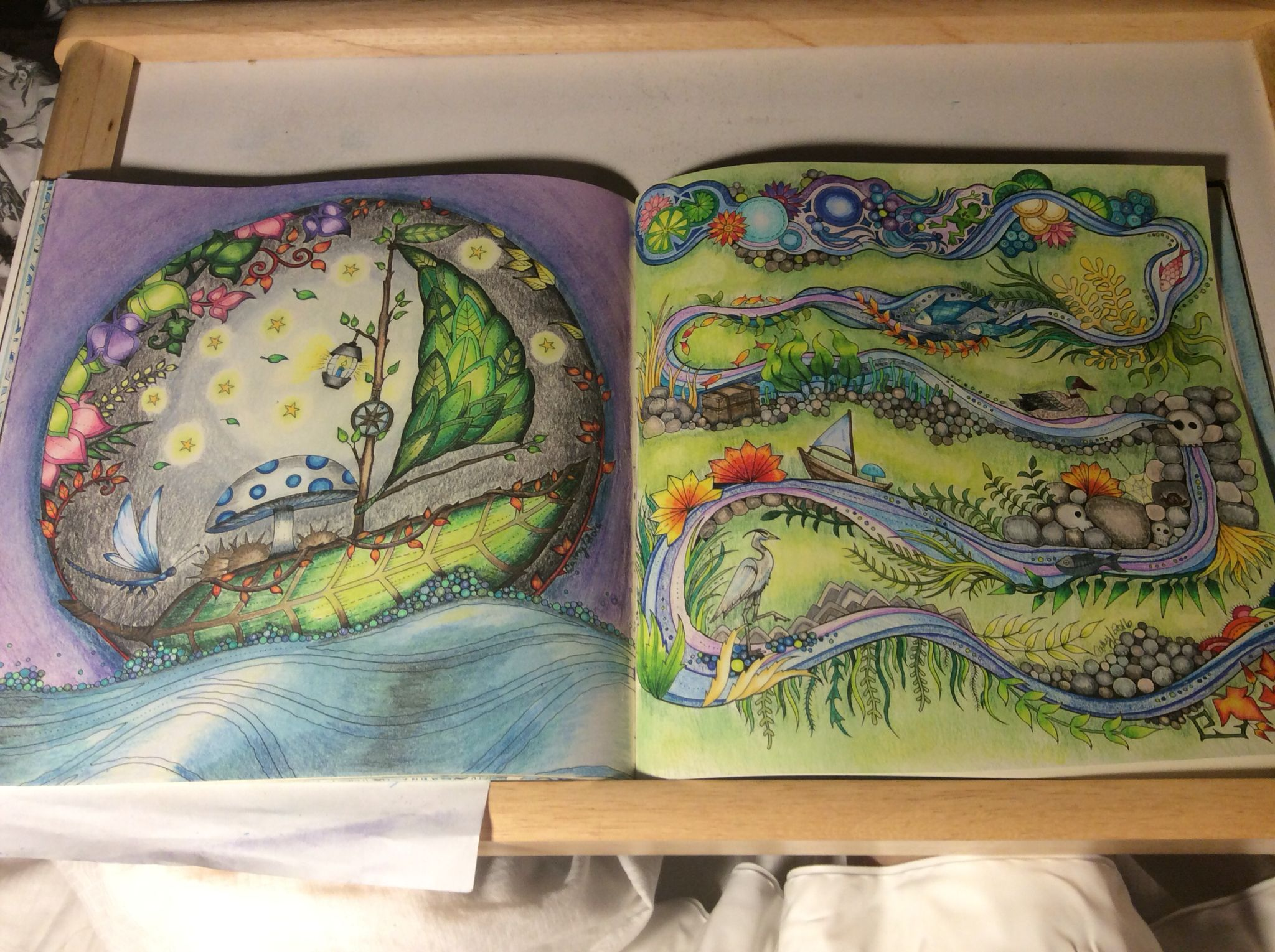 Boat And Stream Pages Enchanted Forest Johanna Basford Cathyc Pencil Crayons