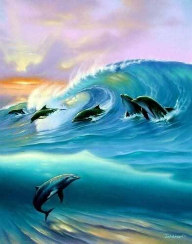 dolphin pictures images - Google Search