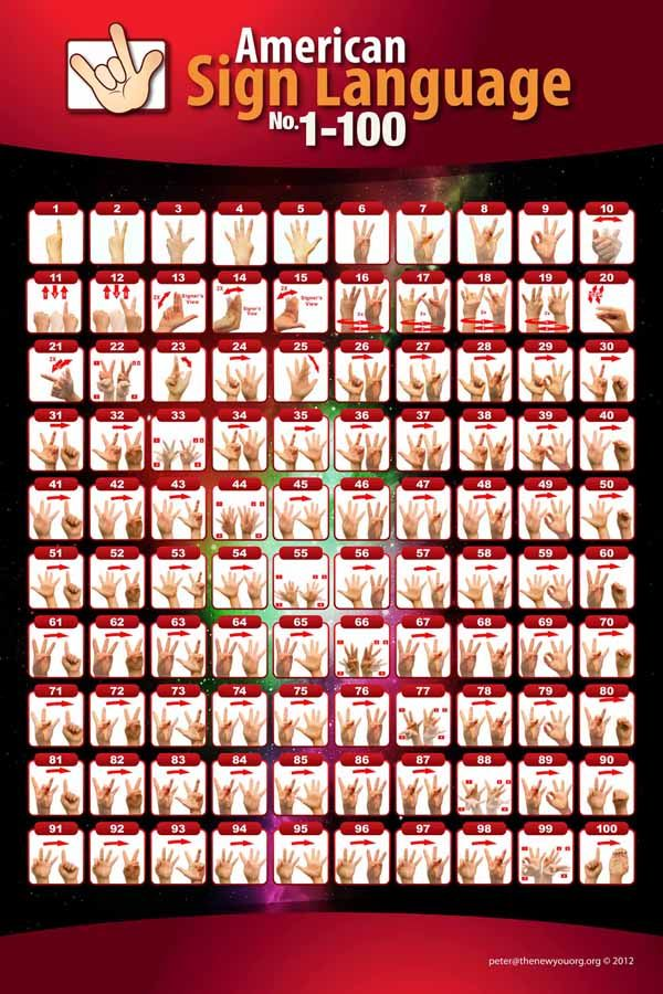 American Sign Language Numbers 1 100 Poster With Images Baby