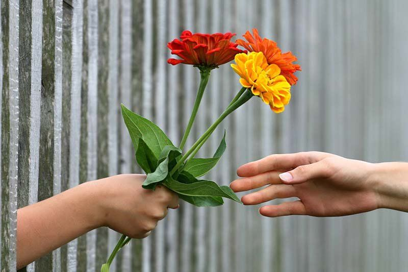 Kata Kata Bijak Cinta Jarak Jauh Ldr Sedih Dan Romantis Cinta