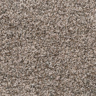 Spellbound Ii Color Latte Texture 12 Ft Carpet 1080 Sq Roll H2003 301 1200 The Home Depot