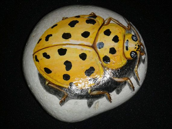 Hand Painted Beetle Stone / Rock Art / Garden Stone / Yard Art / Paper Weight / Flower Pot Decor / Great Christmas Gifts on Etsy