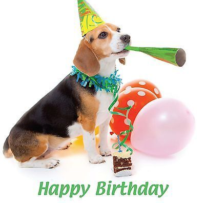 Details About Happy Birthday Blank Card Party Hat Beagle Puppy