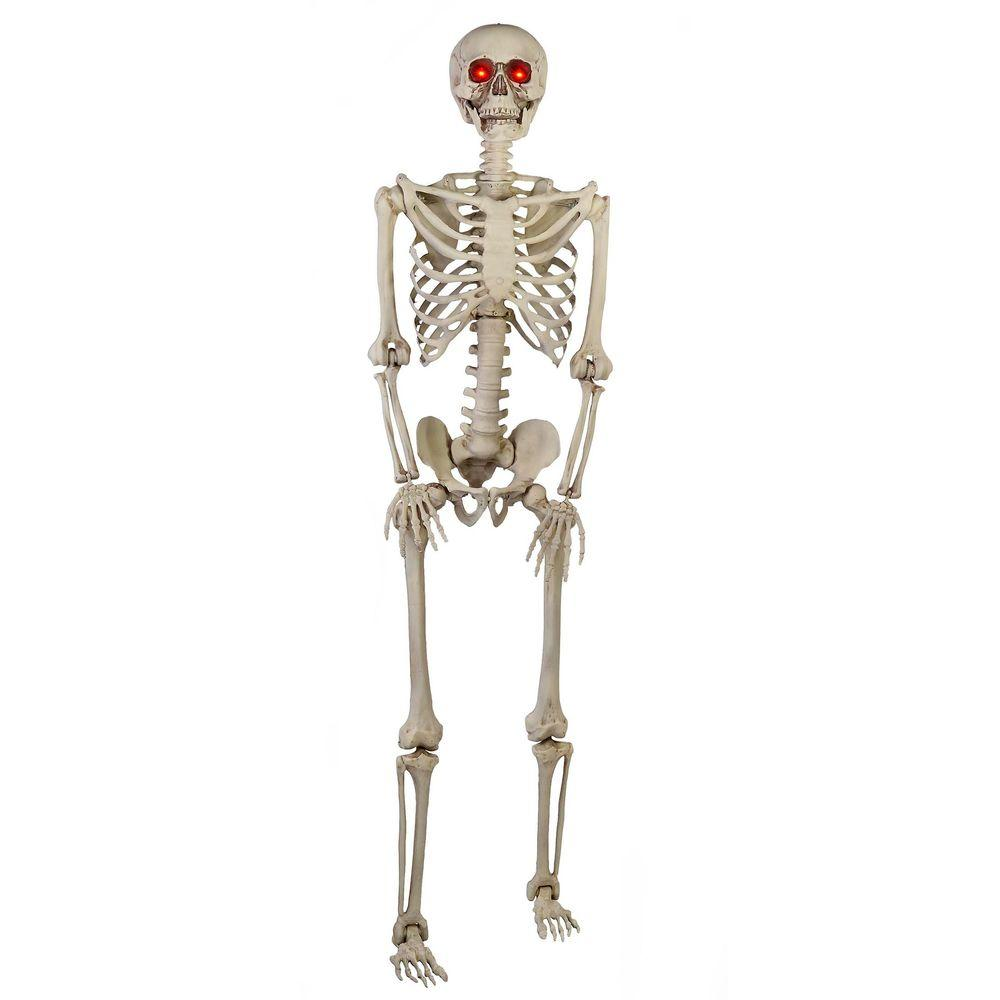 Home Accents Holiday 5 Ft Poseable Skeleton With Led Illumination 5349 60272hd The Home Depot Posable Skeleton Poseable Skeletons Halloween Props