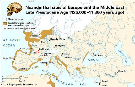 a report on the neanderthals of europe Neanderthals were very early (archaic) humans who lived in europe and western asia from about 400,000 years ago until they became extinct about 40,000 years ago denisovans are another population of early humans who lived in asia and were distantly related to neanderthals.