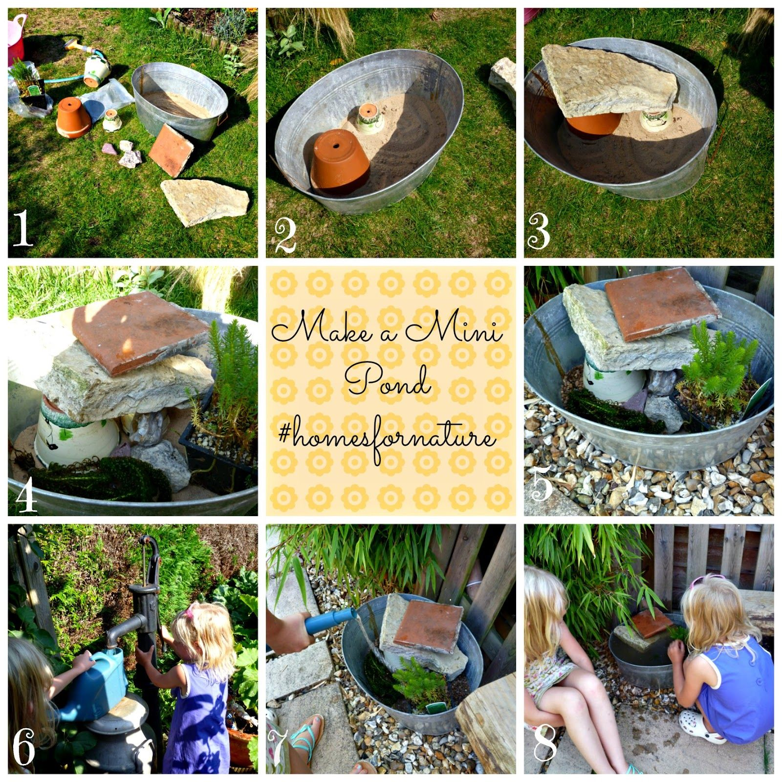 Wildlife Pond Surrounded By Pebbles: Make A Mini Pond #homesfornature