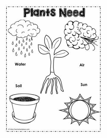 plants need poster march worksheets kindergarten worksheets plant needs preschool worksheets. Black Bedroom Furniture Sets. Home Design Ideas