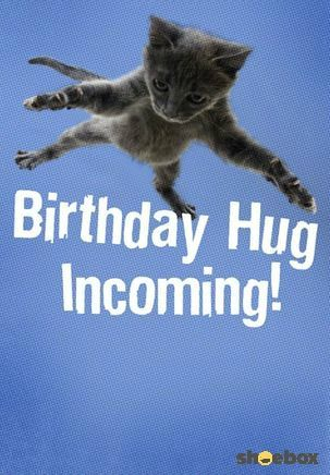 Deliver Enthusiastic Birthday Wishes Tucked Inside This Card From Hallmarks Shoebox Collection Send Funny To Your Favorite Cat Loving