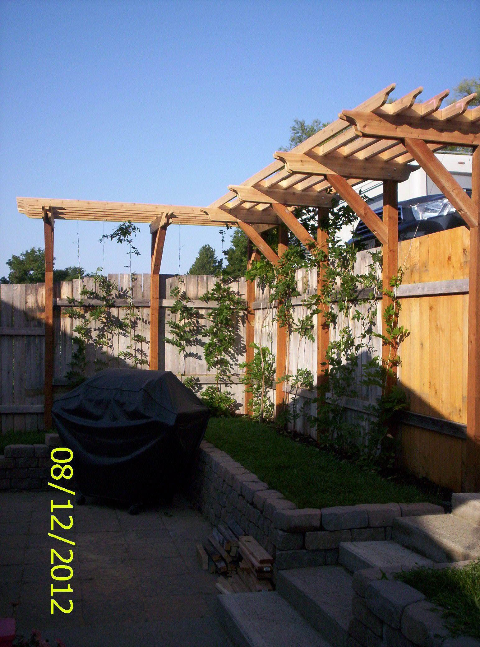 Wisteria arbor my Dad built for me Pergola, Pergola garden