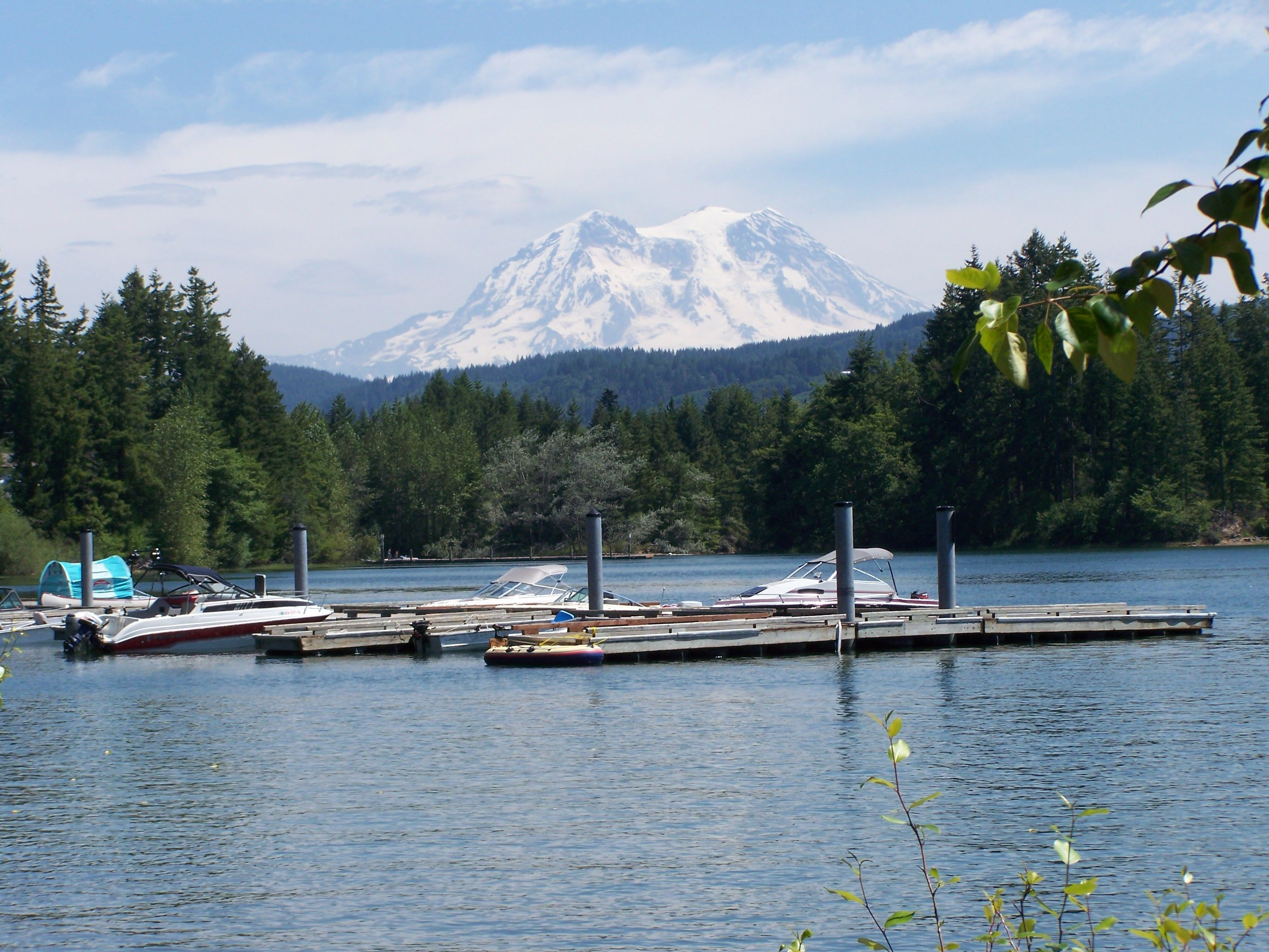 Alder Lake Park Campground Eatonville Camping