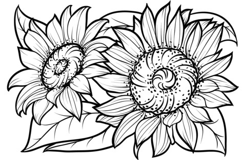 Printable Coloring Pages Sunflowers Page Free Sunflower Coloring Pages Flower Coloring Pages Coloring Pages