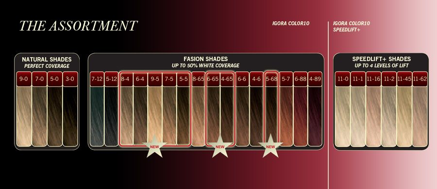 igora color10 color chart hair color chart pinterest washington colors and circles - Igora Coloration