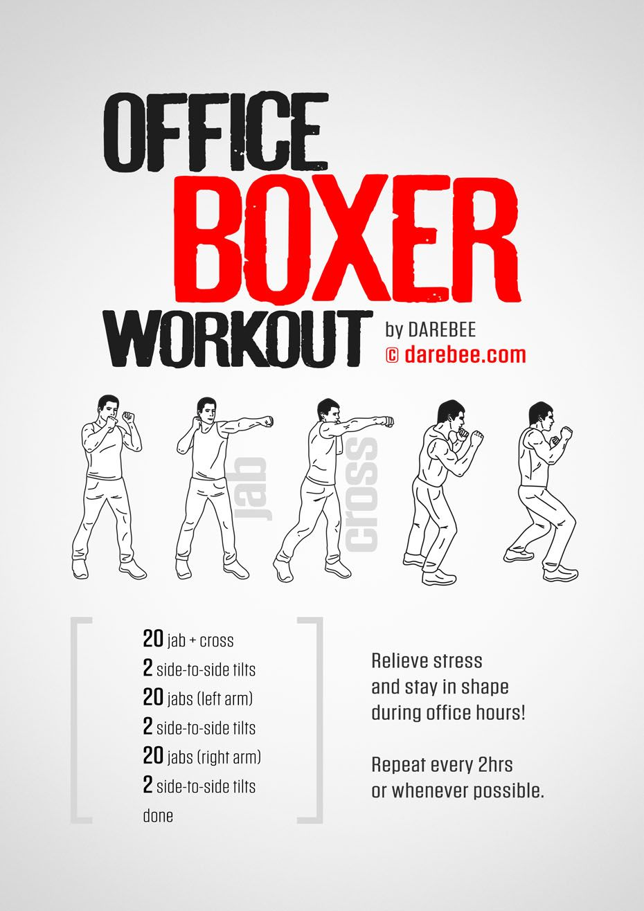 Office Boxer Workout Boxer Workout Boxing Training Workout Boxing Workout Beginner