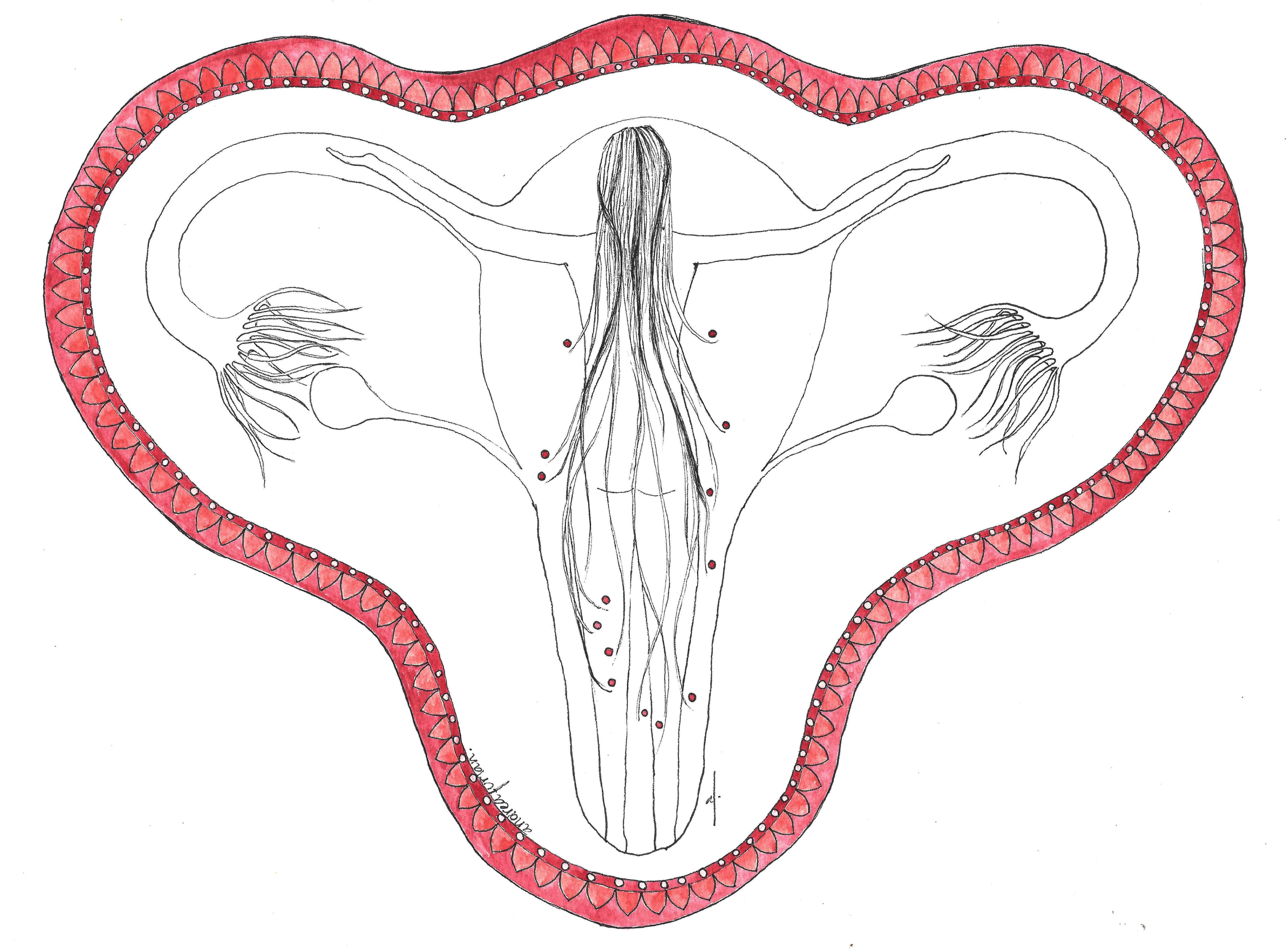 Pin En Ilustracion Mujeres
