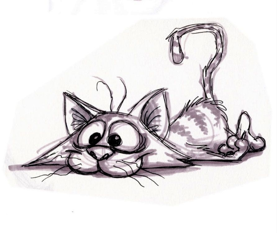 Pin by kathryn riben on kitten things illustration art cat art cat drawing - Dessin chat rigolo ...