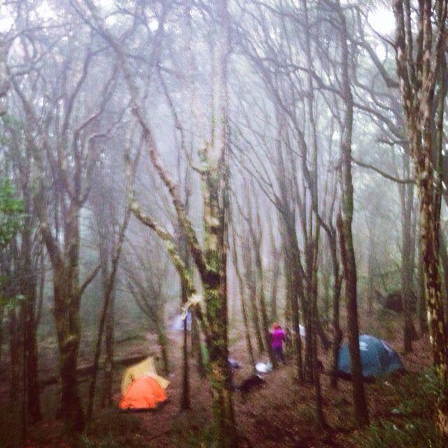 Acampamento Pico do papagaio.