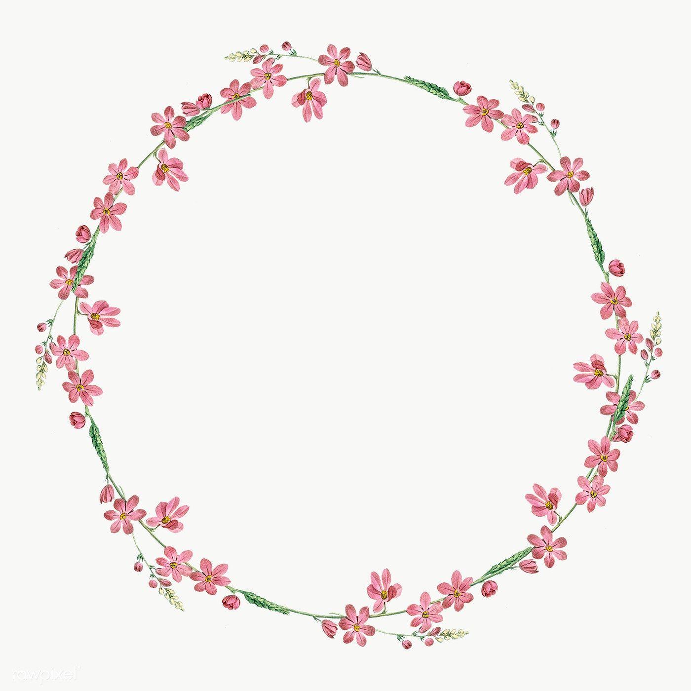 Round Mixed Flowers Frame Patterned Transparent Png Premium Image By Rawpixel Com Kappy Kappy Floral Border Design Flower Frame Floral Logo