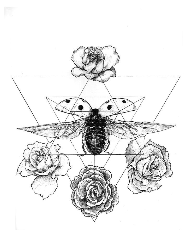 This is a photo of Magic Sacred Geometry Beetle Tattoo Drawing