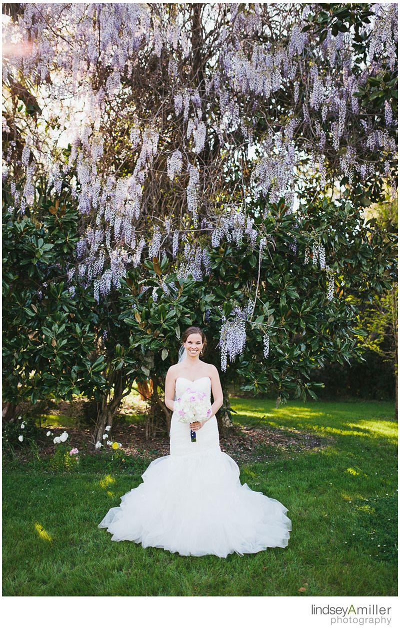 Bride, Wedding, Wedding dresses