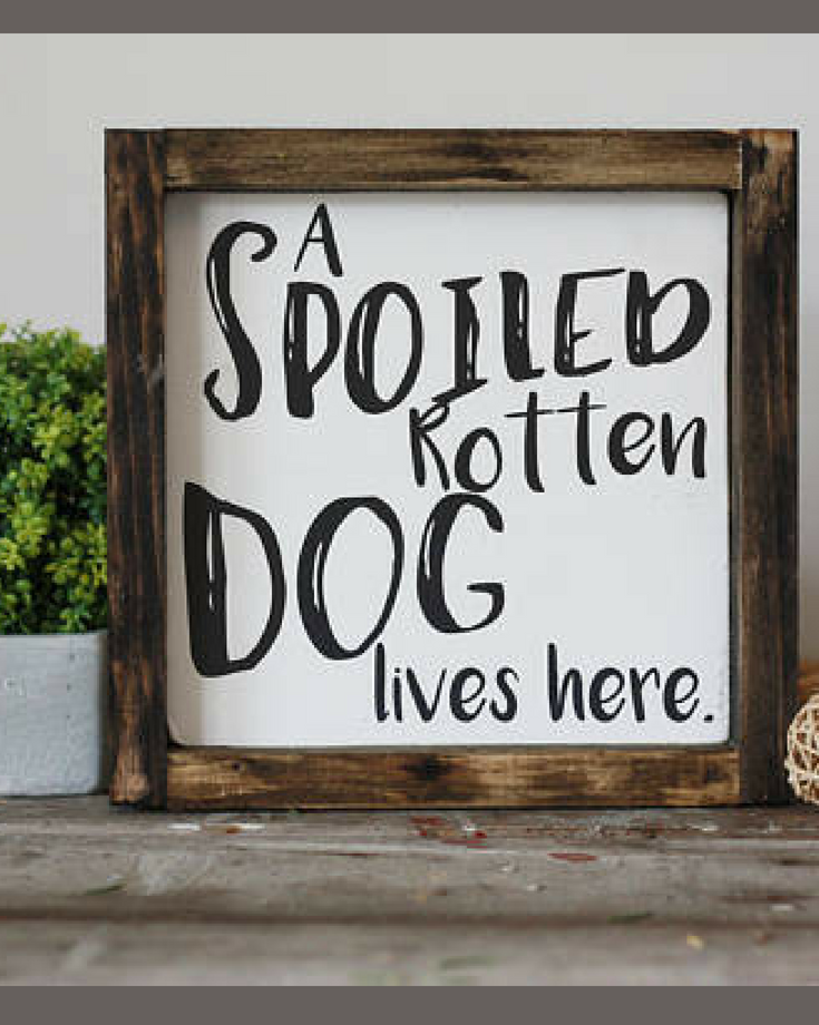 Good To Know!! A Spoiled Rotten Dog Lives Here