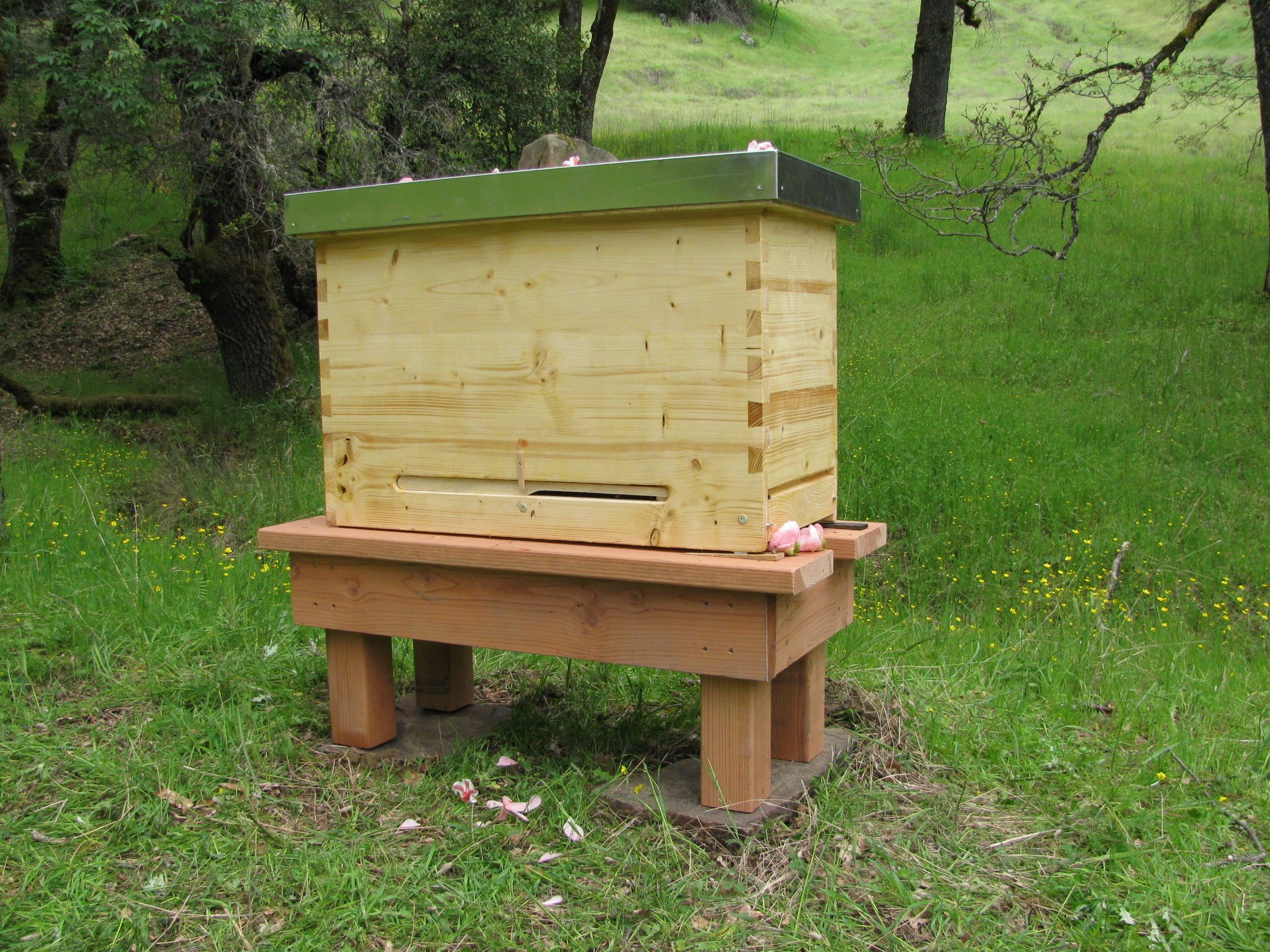 Alternative Bee Keeping Methods