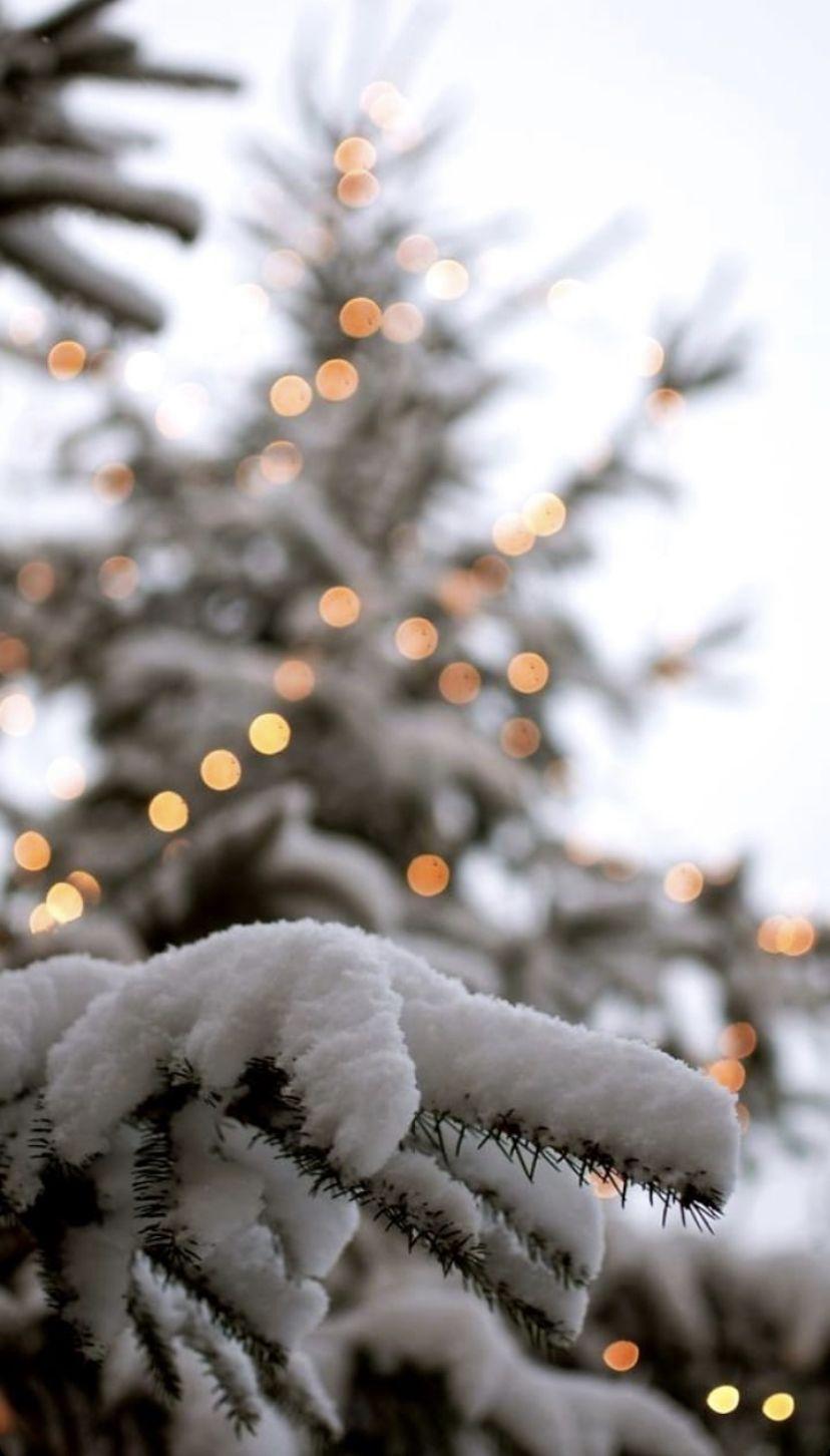 Epingle Par Maria Guerrero Sur Winter Fond Ecran Hiver Fond Ecran Noel Fond D Ecran Telephone Noel