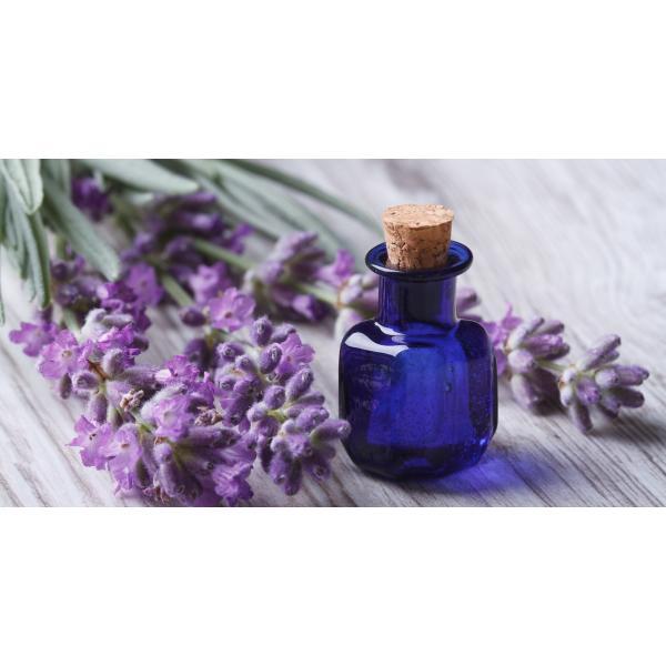 زيت اللافندر للشعر Lavender Oil Benefits Lavender Oil Uses Lavender Essential Oil