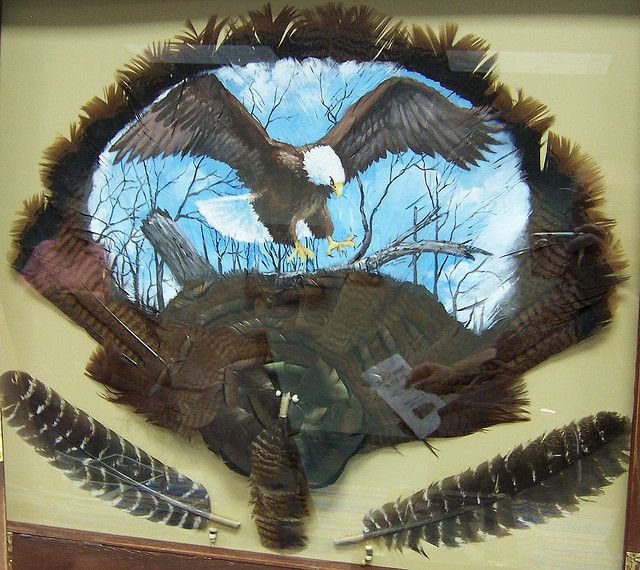 Painted Turkey Feathers