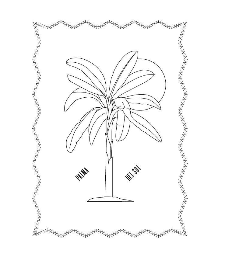 palm   design by studio pott