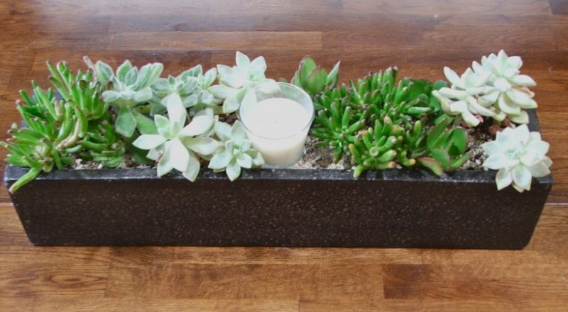 how to make a succulent planters with sticks