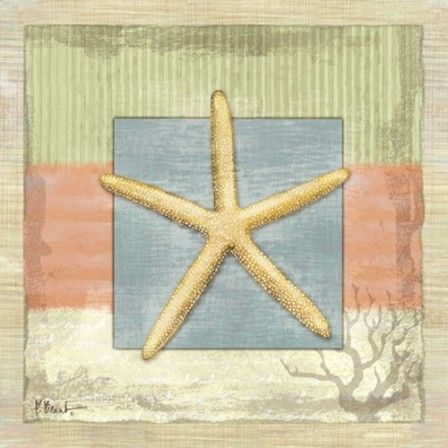 2nd bed - Montego Starfish