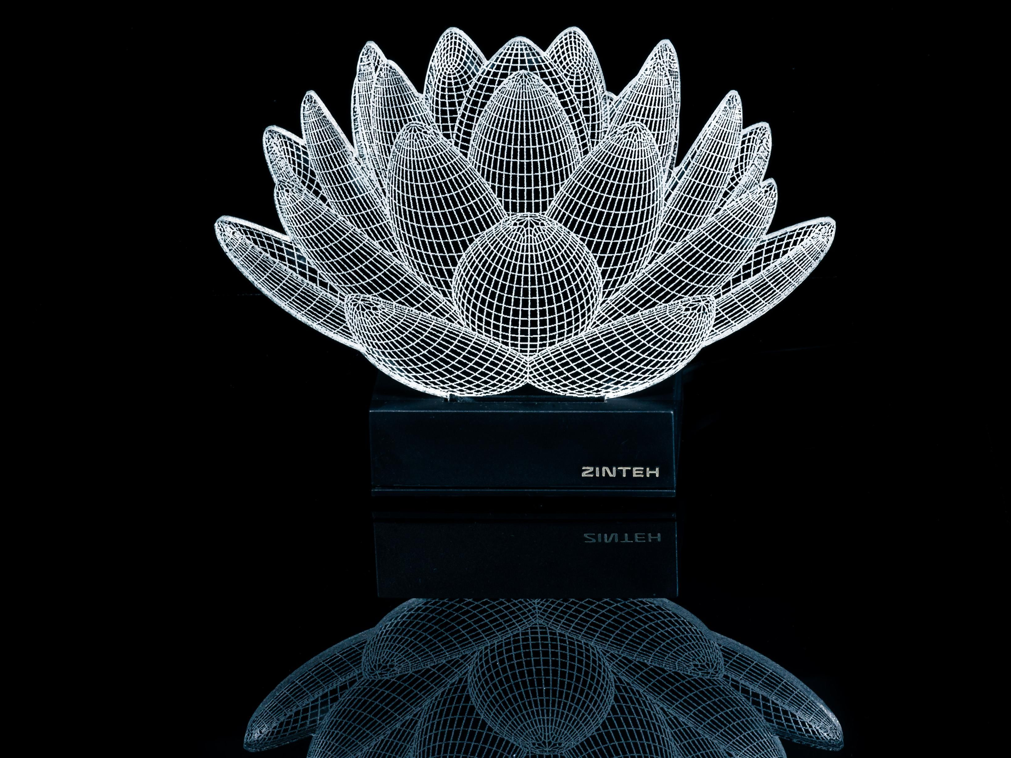 Lotus 3d Illusion Led Lamp Led Lamp Lamp 3d Optical Illusions