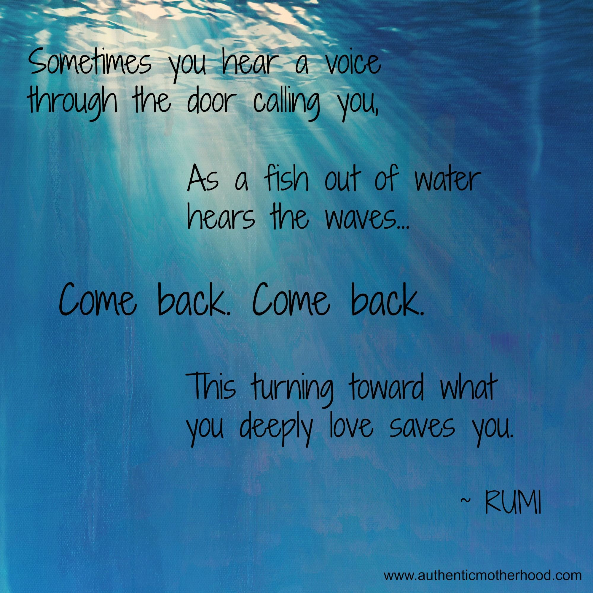 Rumi quotes z rumi pinterest for Hafiz gedichten