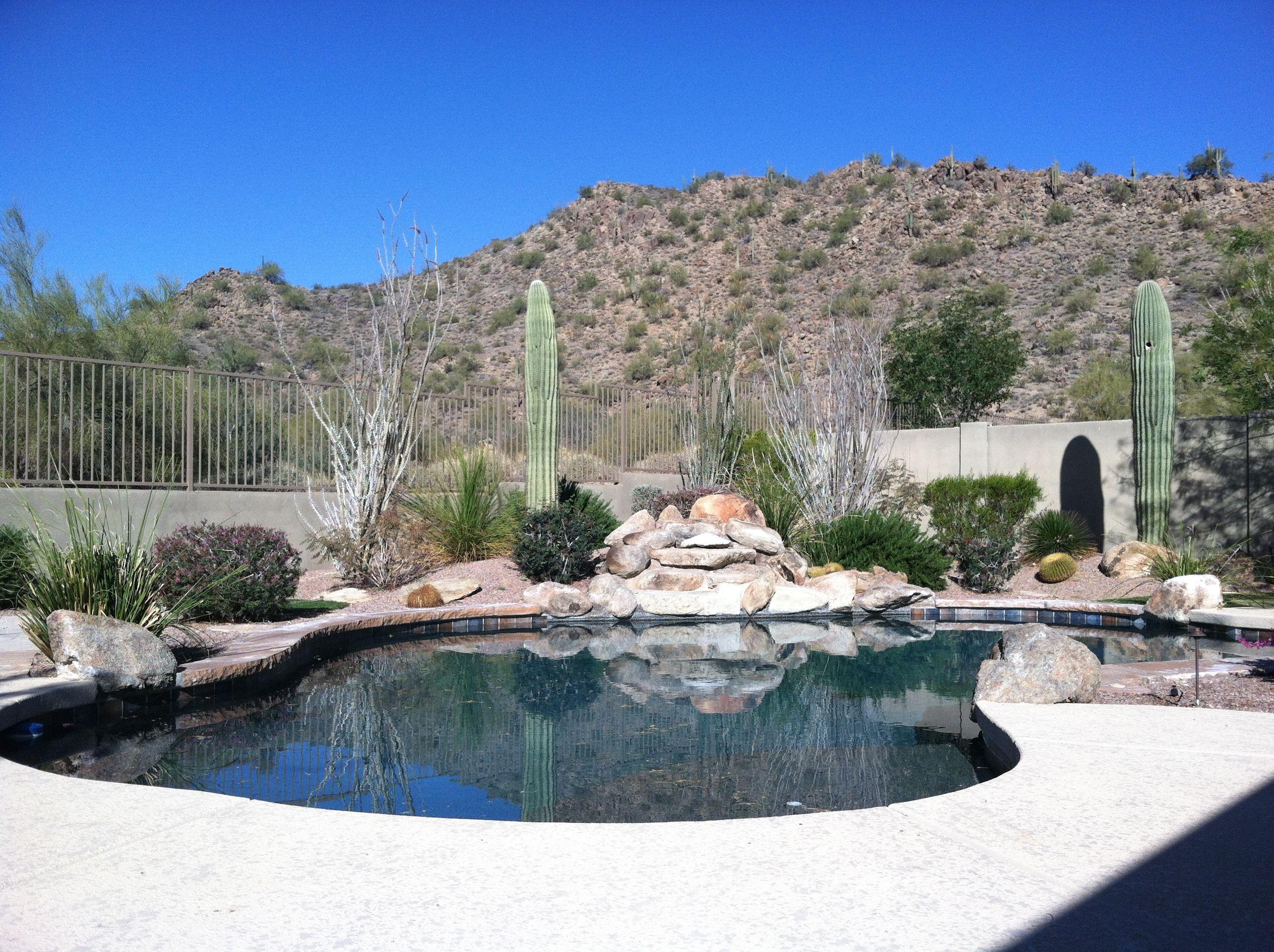 Nw Valley Desert Living This Desert Oasis Pool Backs To The Desert