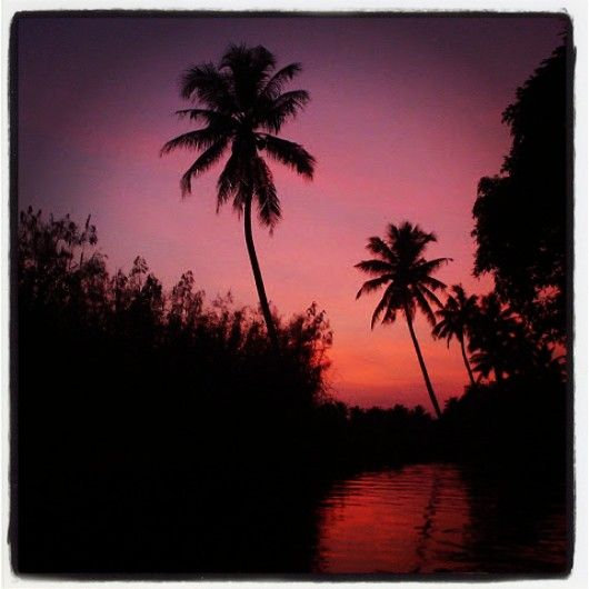 Allepey back water, Kerala.. House Boat Sunset... One of the most beautiful backwaters.