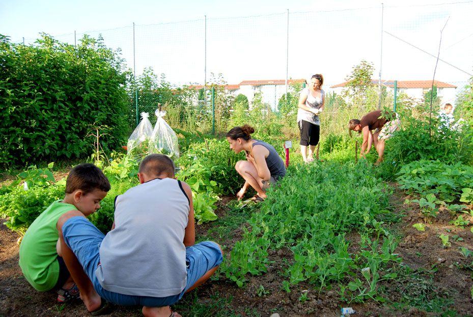 Urban Gardening: Garteln im öffentlichen Raum  Mehr unter >>> http://a24.me/1lquhC7