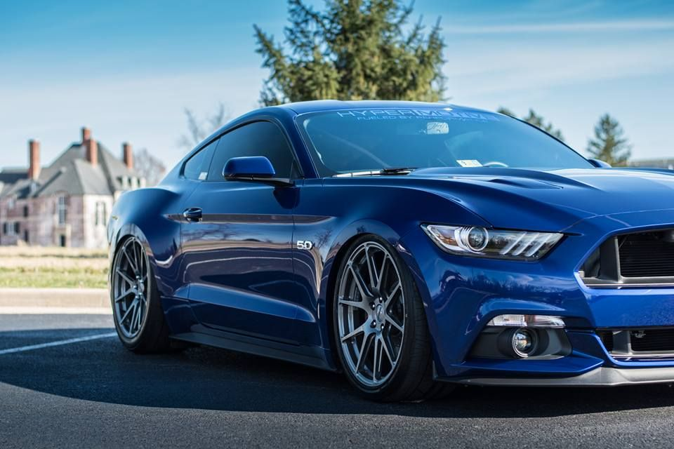 Pin By Forgeline Motorsports On Domestic Muscle Mustang