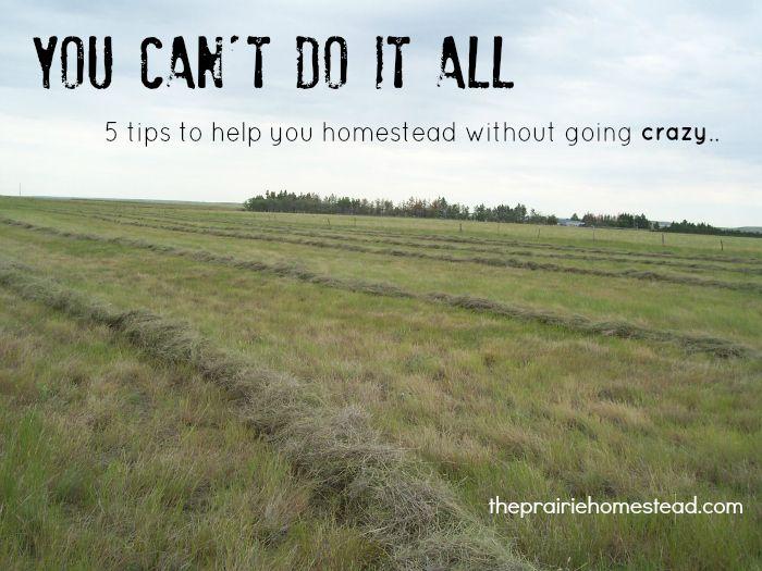 Www.theprairiehomestead.com Part - 17: homesteading self sufficiency - http:--www.theprairiehomestead.com-2013-