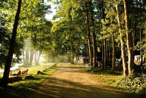 Traumhafter Naturcampingplatz mit 4*-Komfort direkt am See! Schlaffässer, Safarizelte und Blockhütten zum Mieten! Natur pur und noch echtes Camperfeeling!