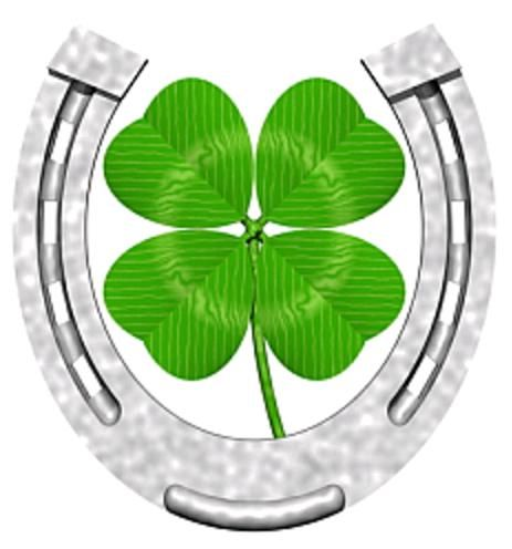 Horseshoe And Clover Good Luck And Lucky Charm Symbol Fev