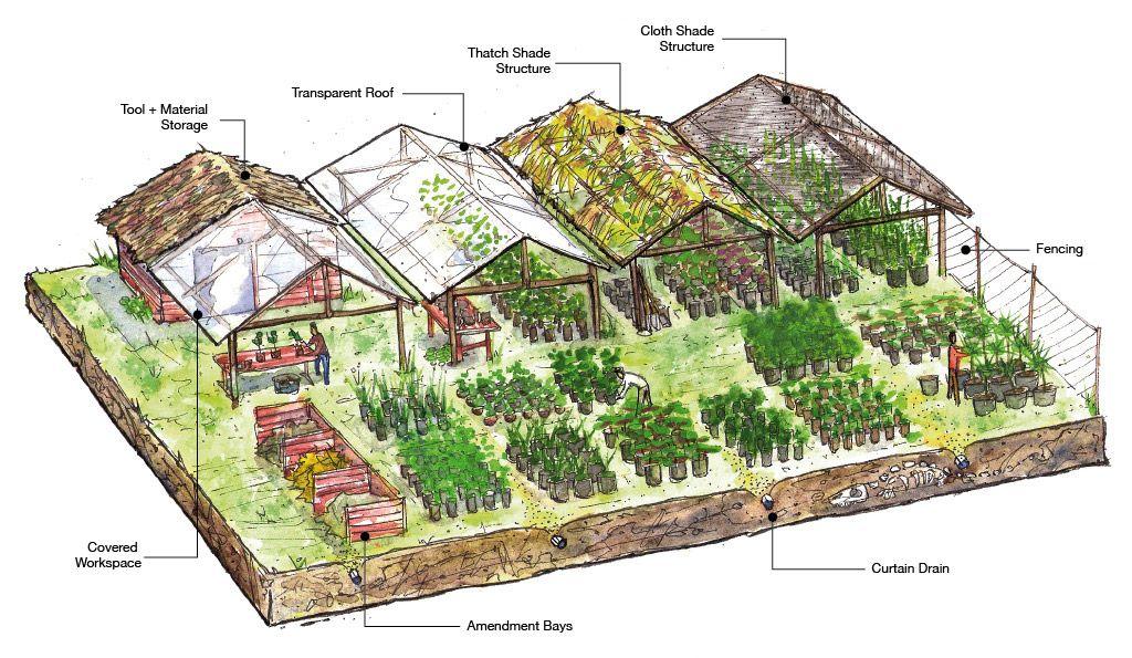 nursery plants - Buscar con Google | MESA DE CULTIVO ...