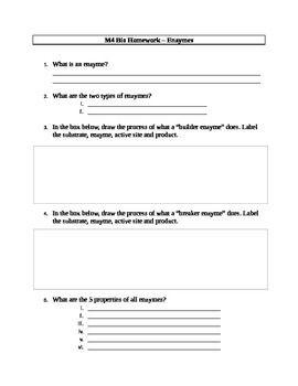 Enzyme Worksheet