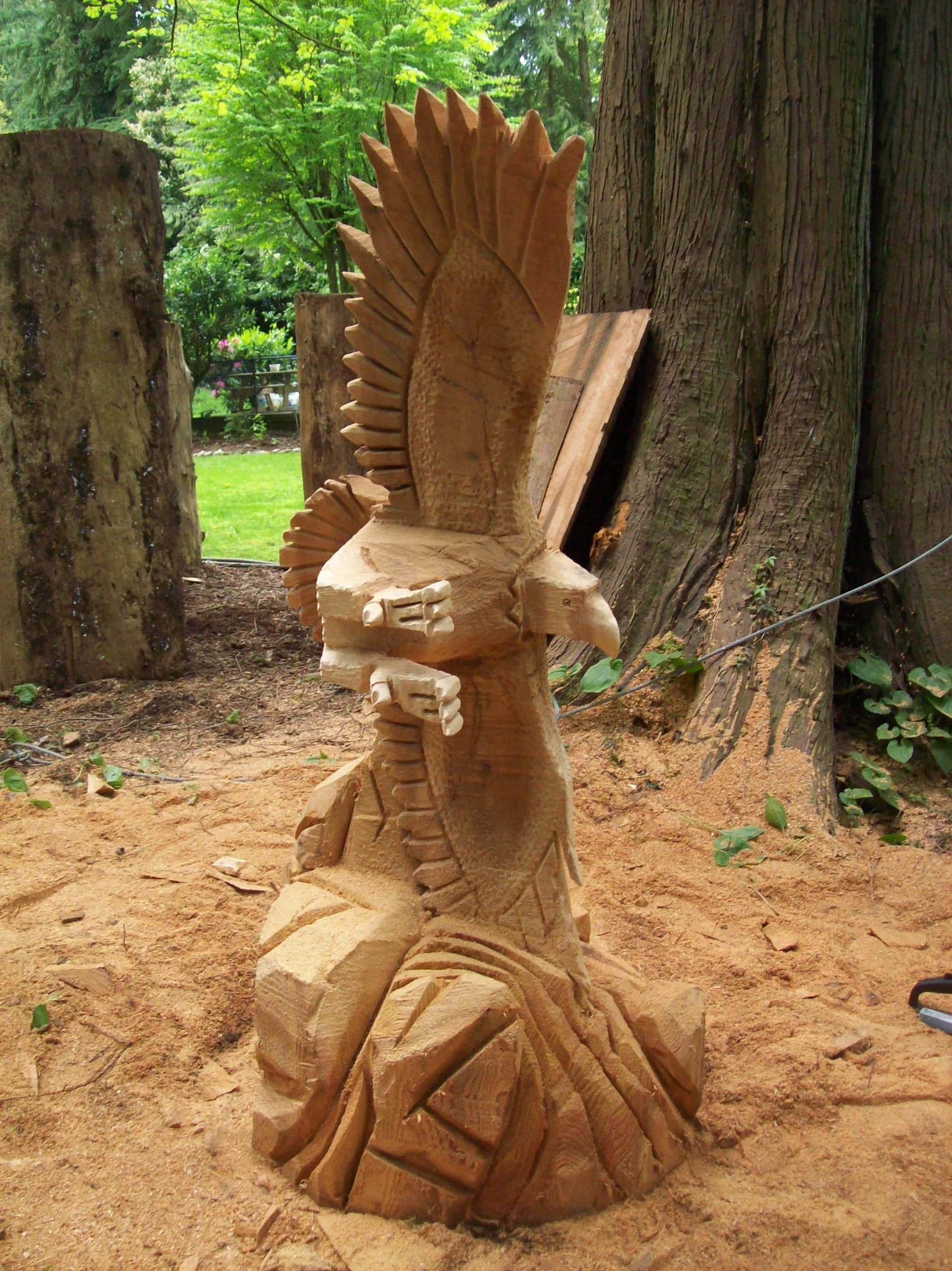 Soaring eagle chainsaw carved from one western red cedar