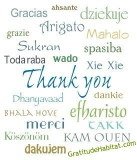 Thank You In Many Languages and NO - I don't know what Country they All Represent, but I have friends here from all over the World….. This is a Thank YOU to All My Followers  <3
