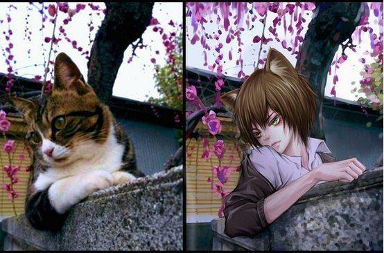 ~Животные: из 3d в аниме~ | 471 фотография