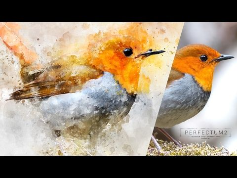 How To Create A Watercolor Painting Effect In Photoshop