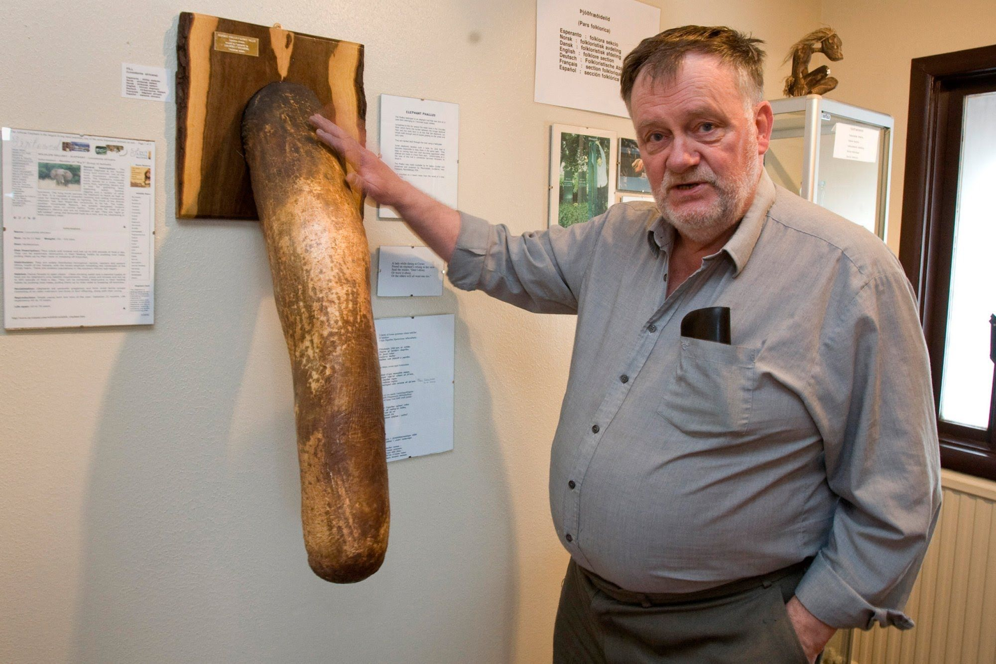 largest dicks Man with world's biggest penis – 19 inches – could be appearing in metro.co.uk//man-with-worlds-biggest-penis-19-inches-could-be-appearing-in-porn-very-soon-6403196/‎.