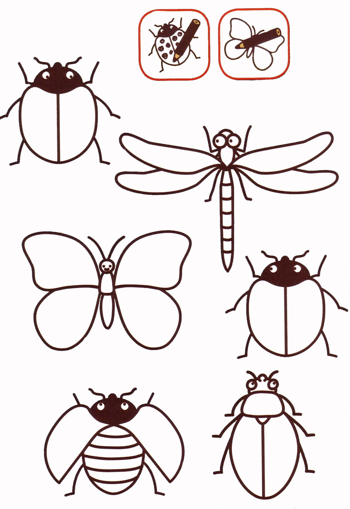 Insectos … | Insect art, Pattern art, Bugs and insects